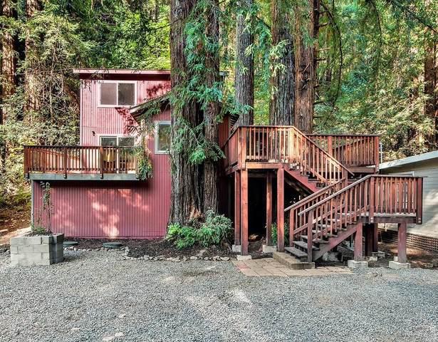 14411 Camino Del Arroyo, Guerneville, CA 95446 (#22025840) :: Team O'Brien Real Estate