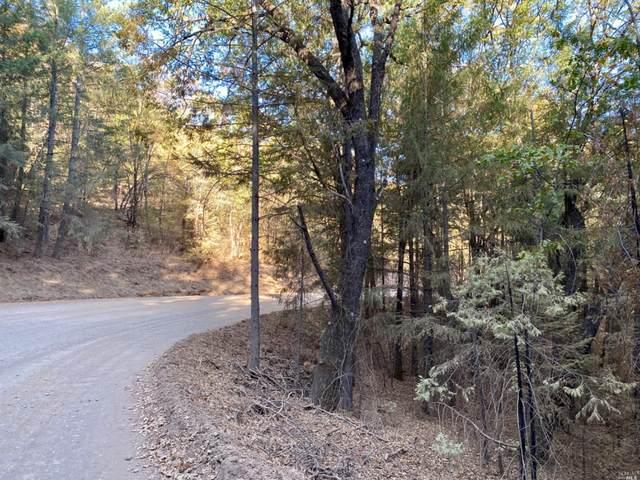 9600 Seigler Springs North Road, Kelseyville, CA 95451 (#22026064) :: W Real Estate | Luxury Team