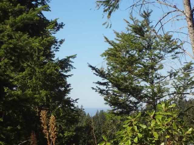44948 Fish Rock Road, Gualala, CA 95445 (#22026296) :: Lisa Perotti | Corcoran Global Living