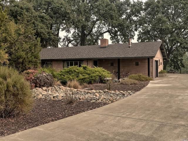 6430 Kelsey Creek Drive, Kelseyville, CA 95451 (#22026386) :: Team O'Brien Real Estate