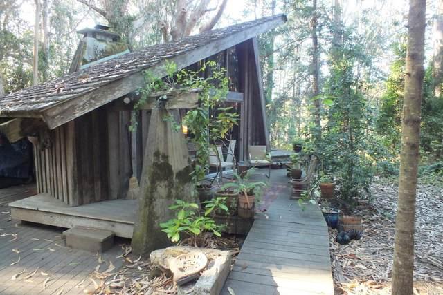 12150 Oakwood Road, Mendocino, CA 95460 (#22027440) :: Hiraeth Homes