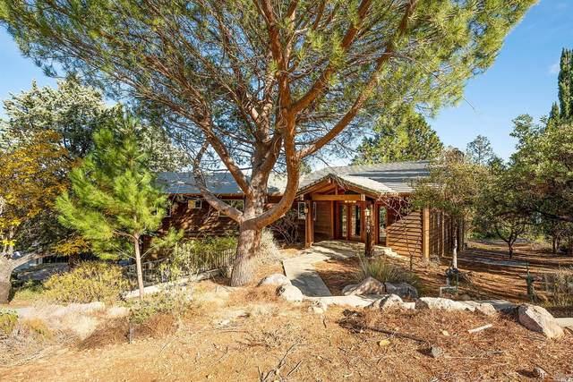 3580 Riviera West Drive, Kelseyville, CA 95451 (#22028267) :: Lisa Perotti | Corcoran Global Living