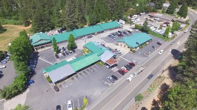 13451 Colfax Highway, Grass Valley, CA 95945 (#22028311) :: Hiraeth Homes