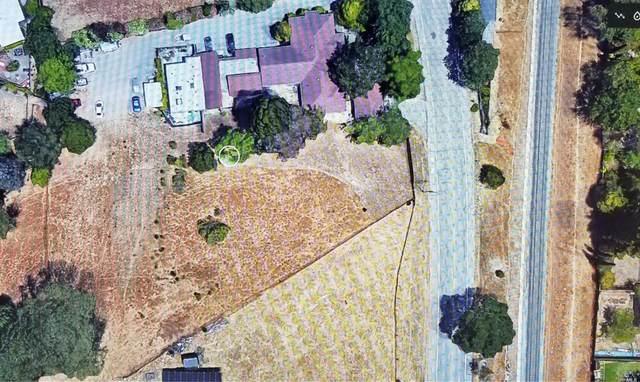 179 Los Ranchitos Road, San Rafael, CA 94903 (#22028729) :: Hiraeth Homes