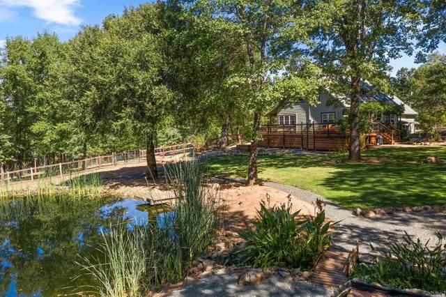 9259 Antler Hill Drive, Kelseyville, CA 95451 (#22028819) :: Corcoran Global Living