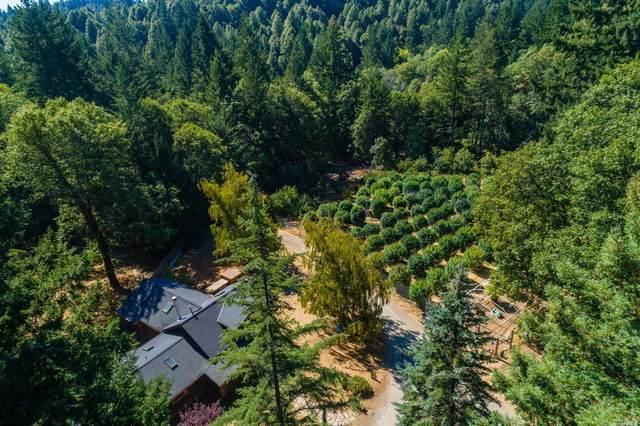 29376 Sherwood Road, Willits, CA 95490 (#22029205) :: Lisa Perotti | Corcoran Global Living