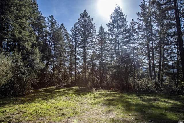 0 Dry Creek Road, Healdsburg, CA 95448 (#22030889) :: Rapisarda Real Estate
