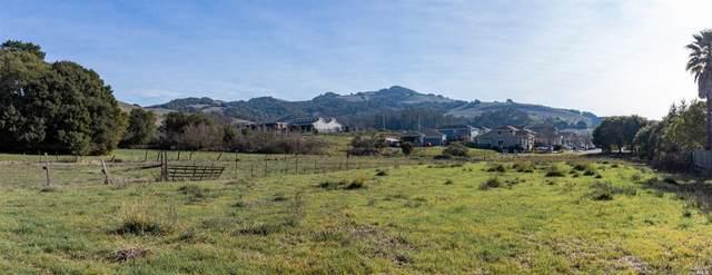 2853 Linwood Avenue, Santa Rosa, CA 95404 (#22030925) :: W Real Estate   Luxury Team