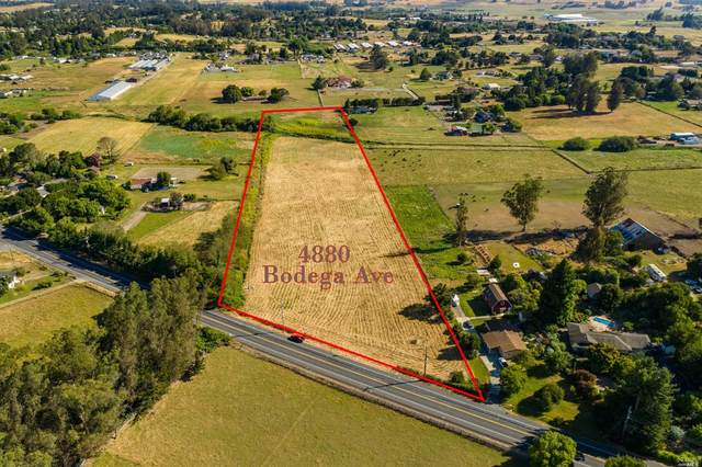 4880 Bodega Avenue, Petaluma, CA 94952 (#22031001) :: Hiraeth Homes