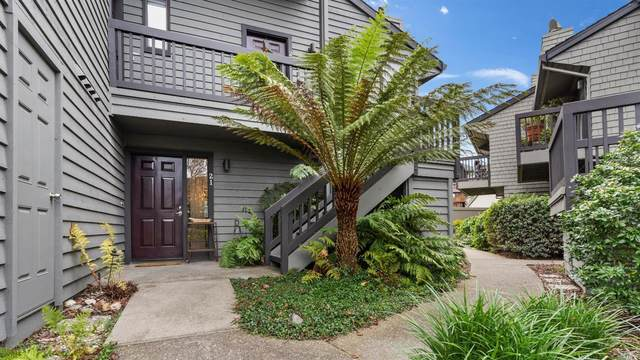21 Cypress Place, Sausalito, CA 94965 (#22031612) :: Team O'Brien Real Estate