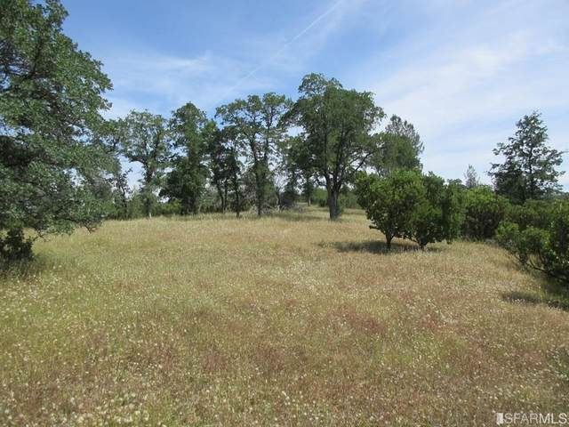 9 Acres Jones Valley Trail, Redding, CA 96003 (#507372) :: Intero Real Estate Services