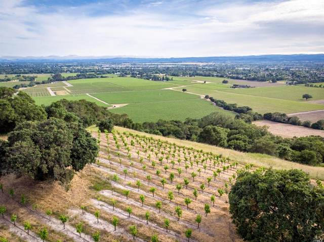 0 Chalk Hill Road, Healdsburg, CA 95448 (#22003800) :: W Real Estate   Luxury Team