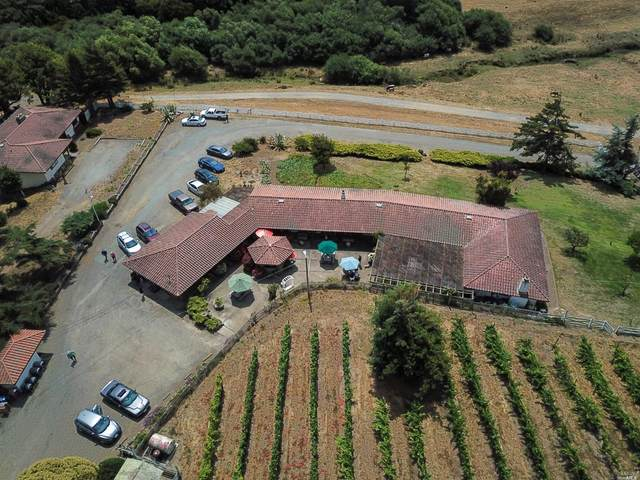 12700 State Route 1 Highway, Point Reyes Station, CA 94956 (#22019455) :: The Abramowicz Group