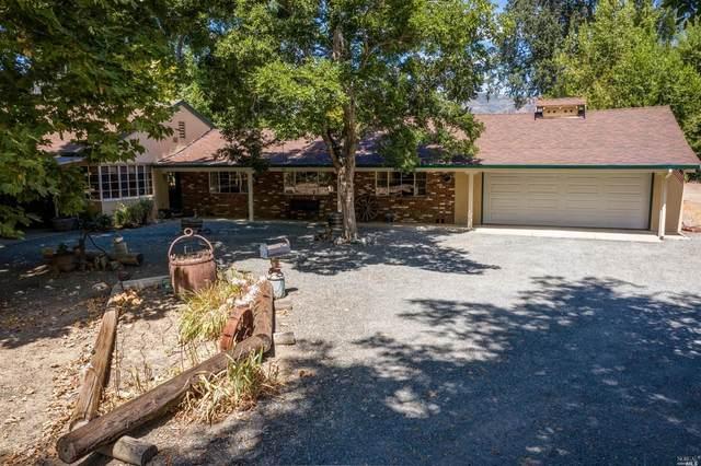 10228 Elk Mountain Road, Upper Lake, CA 95485 (#22019604) :: Golden Gate Sotheby's International Realty