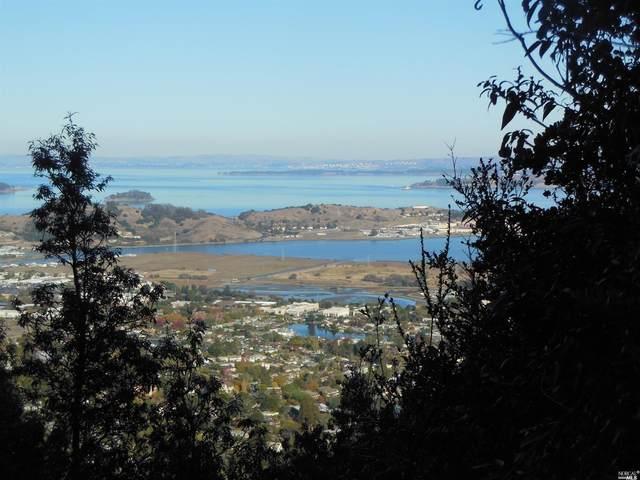 0 Summit Drive, Larkspur, CA 94939 (#22020773) :: Golden Gate Sotheby's International Realty