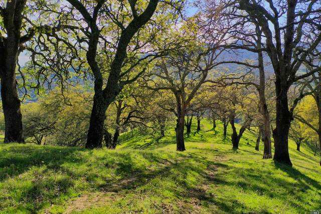 0 Quail Ridge Drive, Napa, CA 94558 (#22031140) :: The Abramowicz Group