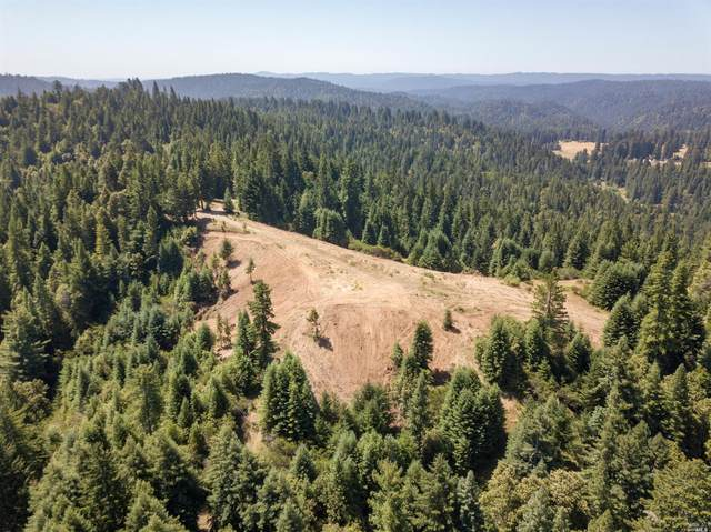 5801 Flynn Creek Road, Comptche, CA 95427 (#22031581) :: The Abramowicz Group