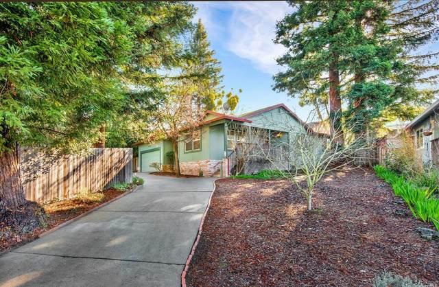210 Frankel Lane, Sebastopol, CA 95472 (#22031139) :: Golden Gate Sotheby's International Realty