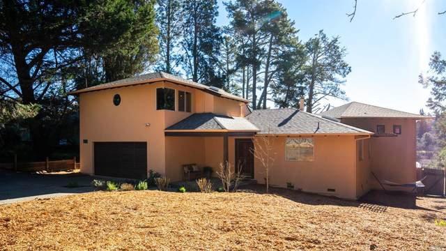 8344 Medved Lane, Sebastopol, CA 95472 (#22031836) :: Golden Gate Sotheby's International Realty