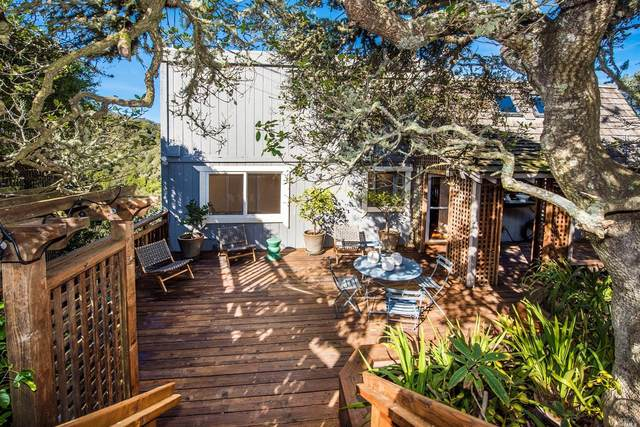 818 Autumn Lane, Mill Valley, CA 94941 (#321002112) :: Golden Gate Sotheby's International Realty