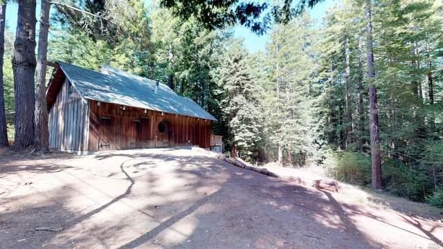 46461 Fish Rock Road, Gualala, CA 95445 (#321003490) :: Hiraeth Homes