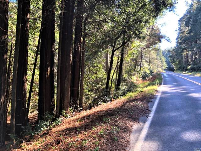 0 Ten Mile Cut Off Road, Point Arena, CA 95468 (#321004200) :: RE/MAX Accord (DRE# 01491373)