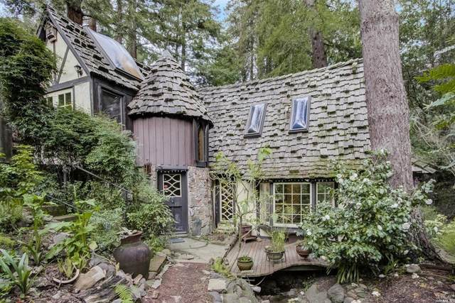 347 Melrose Avenue, Mill Valley, CA 94941 (#321005918) :: Rapisarda Real Estate