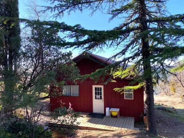 4800 Spyrock Road, Laytonville, CA 95454 (#321007916) :: Hiraeth Homes