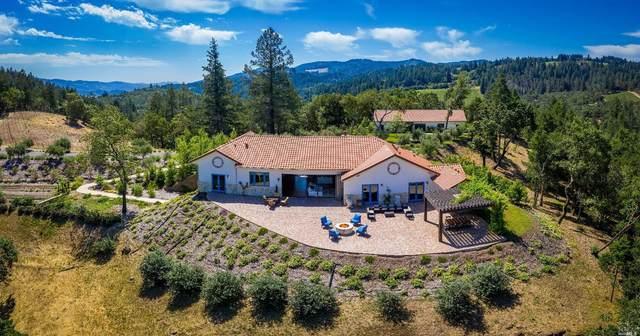 270 Franz Valley School Road, Calistoga, CA 94515 (#321009394) :: W Real Estate   Luxury Team