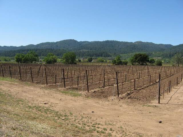 0 Silverado Trail, Calistoga, CA 94515 (#321010394) :: W Real Estate   Luxury Team