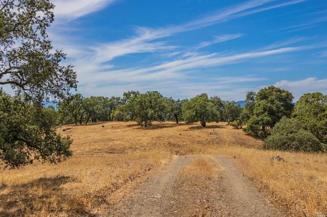 23800 Big Rock Road, Yorkville, CA 95494 (#321012874) :: The Abramowicz Group