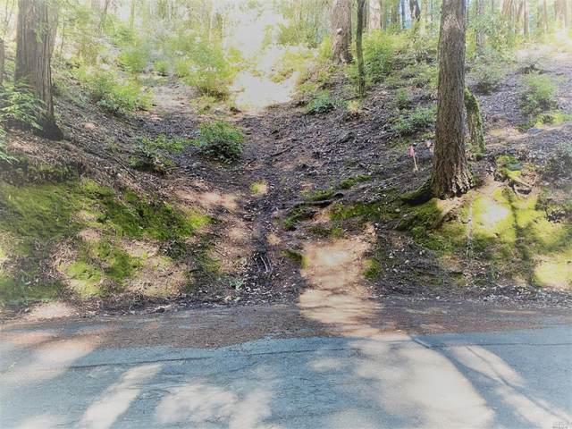 18190 Old Monte Rio Road, Guerneville, CA 95446 (#321011736) :: RE/MAX GOLD
