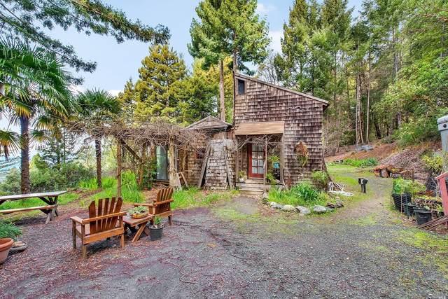 9461 Ben Way, Cazadero, CA 95421 (#321014964) :: Rapisarda Real Estate