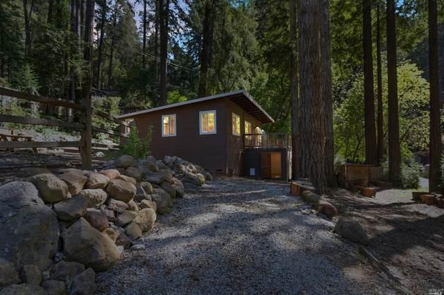 11060 Terrace Drive, Forestville, CA 95436 (#321016561) :: HomShip