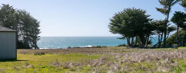 43 Wild Iris, The Sea Ranch, CA 95497 (#321018953) :: Rapisarda Real Estate