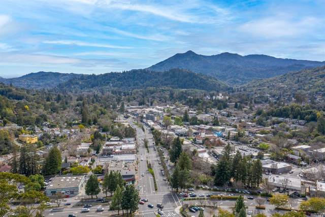113 Spaulding Street, San Anselmo, CA 94960 (#321019461) :: Rapisarda Real Estate
