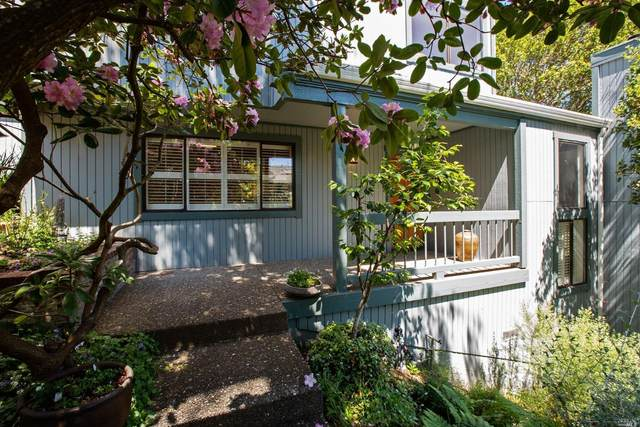 1104 Western Avenue, Mill Valley, CA 94941 (#321019663) :: Golden Gate Sotheby's International Realty