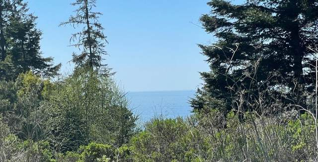 35395 Fly Cloud Road, The Sea Ranch, CA 95497 (#321019676) :: The Lucas Group