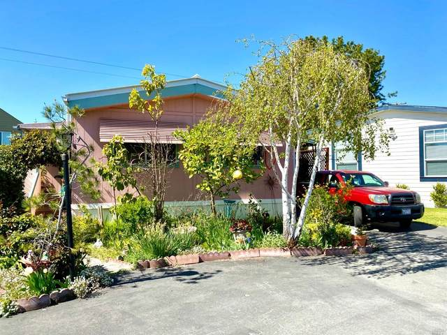 67 Candlewood Drive, Petaluma, CA 94954 (#321020508) :: Rapisarda Real Estate