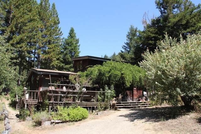 2651 Flynn Creek Road, Navarro, CA 95463 (#321020699) :: Hiraeth Homes