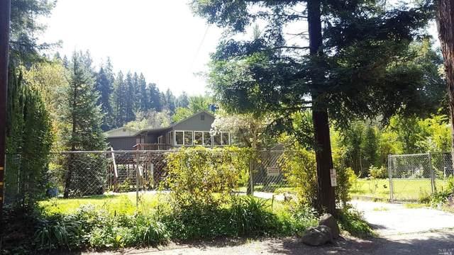 10585 River Drive, Forestville, CA 95436 (#321022077) :: Hiraeth Homes