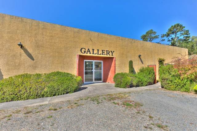 24050 S. Hwy 1, Point Arena, CA 95468 (#321020437) :: RE/MAX Accord (DRE# 01491373)