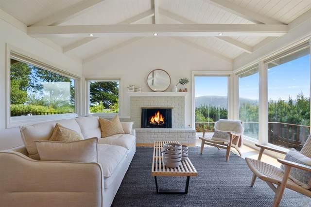 271 Cleveland Avenue, Mill Valley, CA 94941 (#321022376) :: Golden Gate Sotheby's International Realty