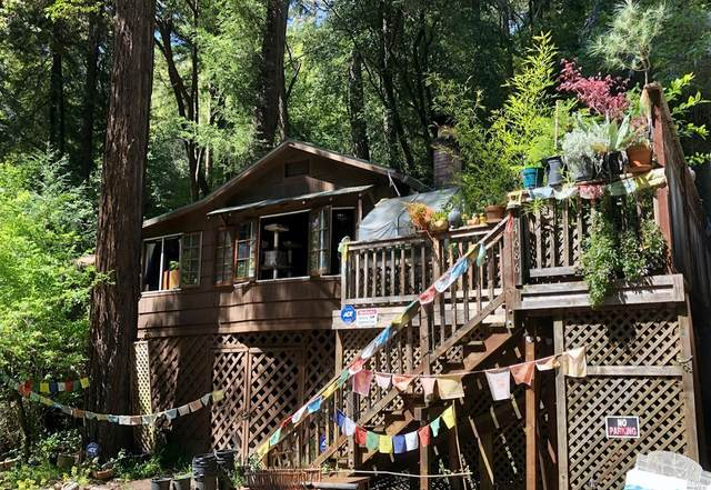 14686 Canyon 1 Road, Guerneville, CA 95446 (#321024131) :: Hiraeth Homes
