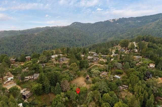 0 Redwood Avenue Avenue, Mill Valley, CA 94941 (#321023829) :: Golden Gate Sotheby's International Realty