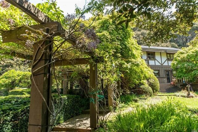 16651 Brookfield Drive, Fort Bragg, CA 95437 (#321024639) :: Golden Gate Sotheby's International Realty