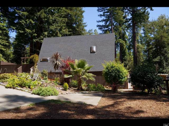 46151 Pacific Woods Road, Gualala, CA 95445 (#321024685) :: The Abramowicz Group