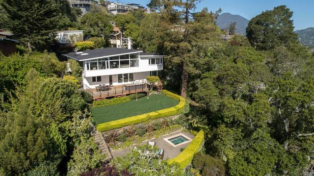 231 Princeton Avenue, Mill Valley, CA 94941 (#321024798) :: The Lucas Group