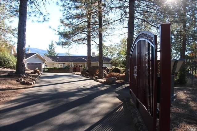 9183 Fox Drive, Cobb, CA 95426 (#321025484) :: Intero Real Estate Services