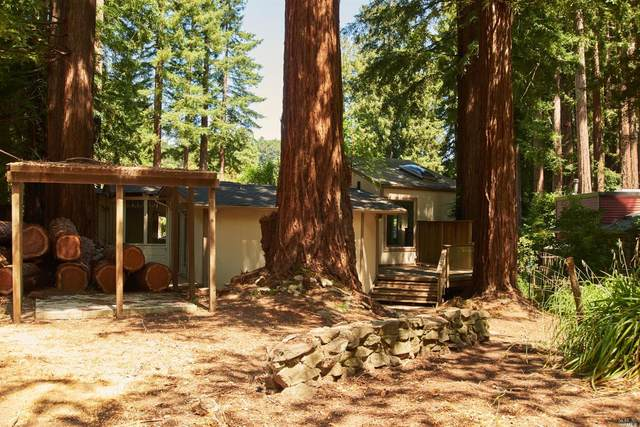 41 Ethel Avenue, Mill Valley, CA 94941 (#321027080) :: Corcoran Global Living